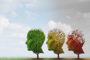 Тест: Вы к деменции склонны?