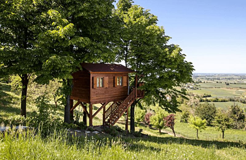 Дом на дереве: Воплощенная детская мечта