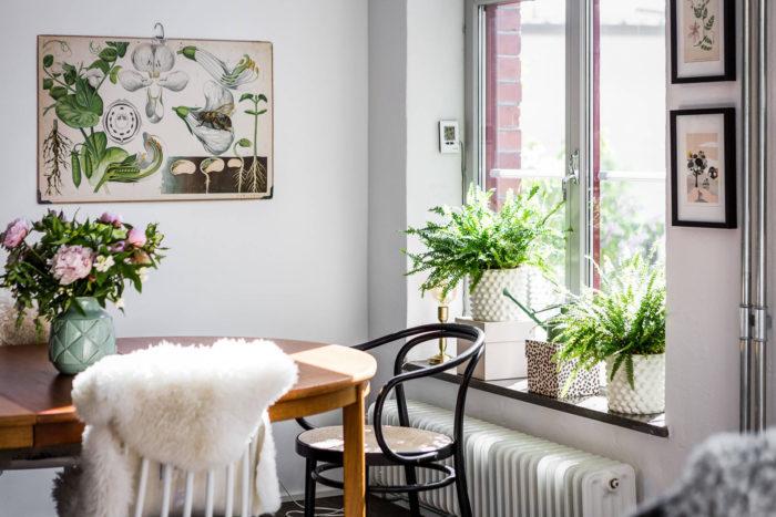 Как создать уютный интерьер с помощью растений