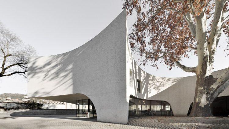 MoDus Architects построила туристический офис вокруг дерева