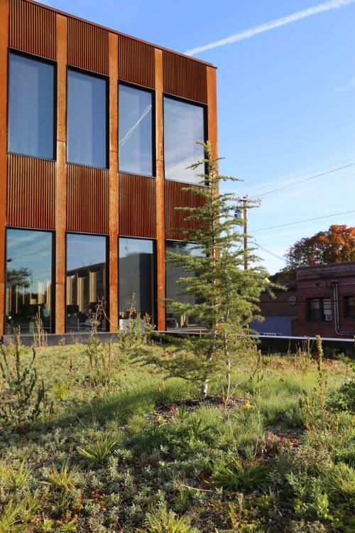 Lever Architecture расширяет офис The Nature Conservancy в Портленде