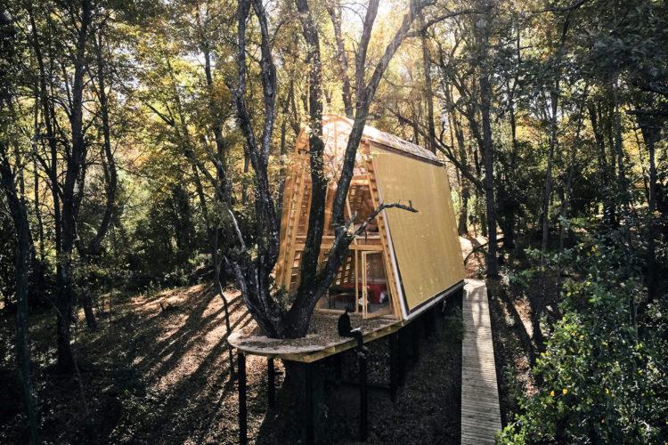 Светящийся домик в Чилийском лесу